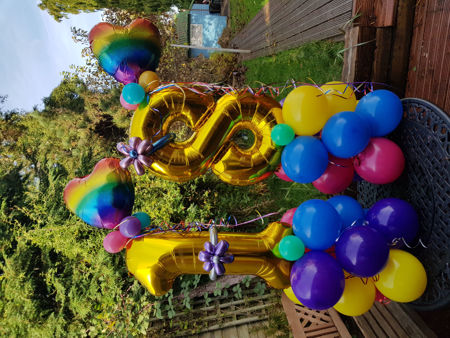 Picture for category Balloons