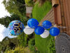 Picture of Balloon bundle (Latex