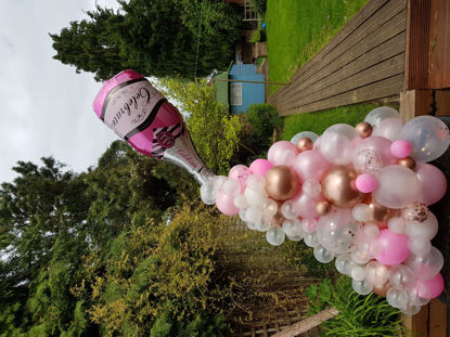 Picture of large cloud balloon display Freestanding