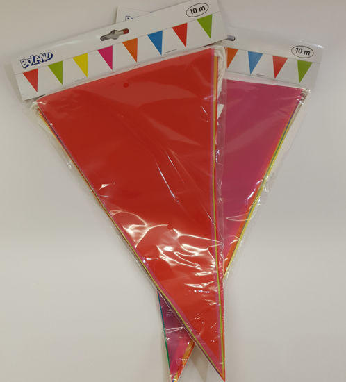 Picture of Bunting with Multi colours